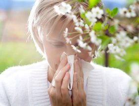 खुशबू ही नहीं बीमारी भी देते हैं फूल
