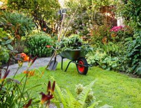 बगीचे से घास-फूस हटाने के 9 नेचुरल टिप्स