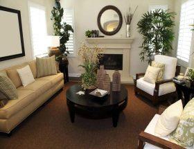 पौधों से सजाइए घर
