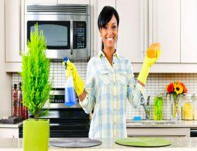 गृह स्वच्छता और स्वास्थ्य