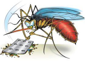 डेंगू से बचाएंगी आपके किचन में मौजूद ये चीजें