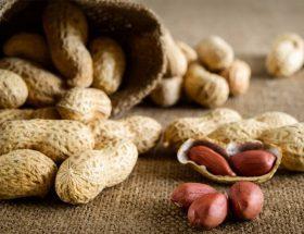 पोषक तत्वों का खजाना है मूंगफली