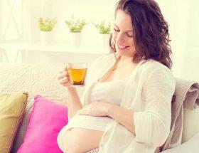 गर्भावस्था में कैसा हो आहार