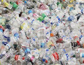 अगर आपके घर में है प्लास्टिक की खाली बोतलें, तो आप बन सकते हैं करोडपति