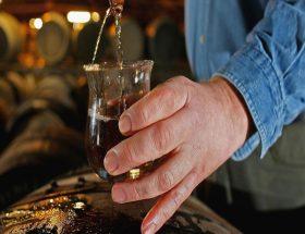 शराब का कहर